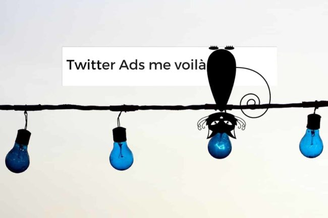 Sept astuces pour bien démarrer avec Twitter Ads