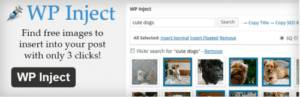 Plugin WordPress WP Inject