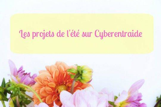les projets du blog cyberentraide pour l'été