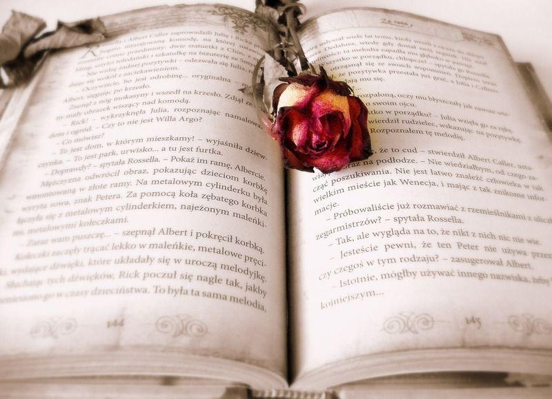 livres fantasy pour découvrir un monde fantastique