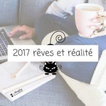 objectifs 2017 pour cyberentraide